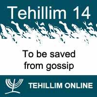 Tehillim 14