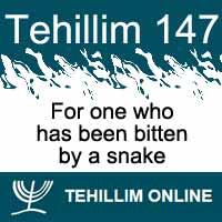 Tehillim 147