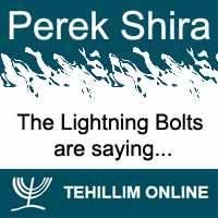 Perek Shira : The Lightning Bolts are saying