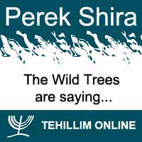 Perek Shira : The Wild Trees are saying