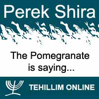 Perek Shira : The Pomegranate is saying
