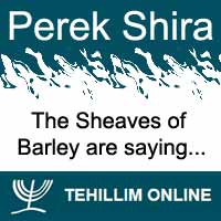 Perek Shira : The Sheaves of Barley are saying