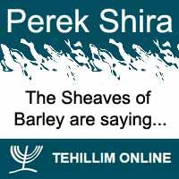 Perek Shira : The Sheaves of Barley are saying