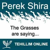 Perek Shira : The Grasses are saying