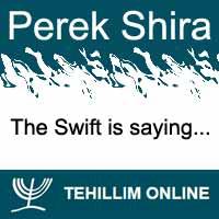 Perek Shira : The Swift is saying