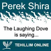 Perek Shira : The Laughing Dove is saying