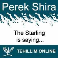 Perek Shira : The Starling is saying