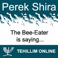 Perek Shira : The Bee-Eater is saying