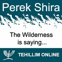 Perek Shira : The Wilderness is saying