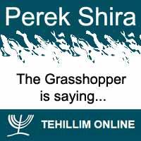 Perek Shira : The Grasshopper is saying