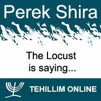 Perek Shira : The Locust is saying
