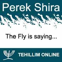 Perek Shira : The Fly