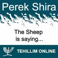 Perek Shira : The Sheep is saying