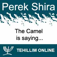 Perek Shira : The Camel is saying