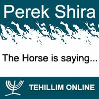 Perek Shira : The Horse is saying
