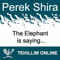 Perek Shira : The Elephant is saying