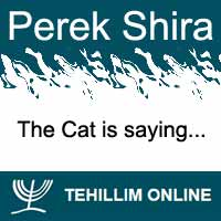 Perek Shira : The Cat is saying