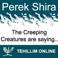 Perek Shira : The Creeping Creatures are saying