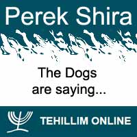Perek Shira : The Dogs are saying